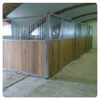 Boxy pro koně